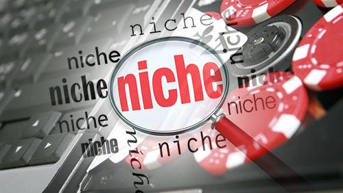 Online Poker – Unleash the Niche