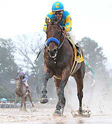 "ODDS ON AMERICAN PHAROAH WINNING ""GRAND SLAM"""