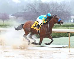 American Pharoah Bucking History for Triple Crown