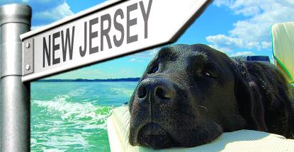 New Jersey online gambling market weathers summer doldrums