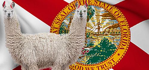 Florida legislators fail to push gaming bills, Seminole compact across finish line