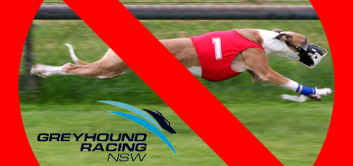 New South Wales bans greyhound racing