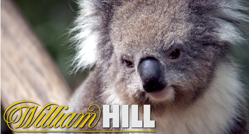 William Hill's Australian write-downs spoil online resurgence