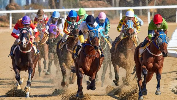 Massachusetts accidentally bans horse racing; tracks suspend operations