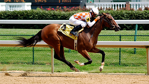 Preakness Stakes odds: Improbable atop board
