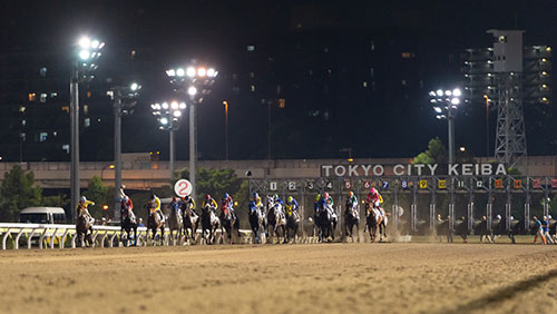 Sky Racing World launches Japan NAR simulcasting